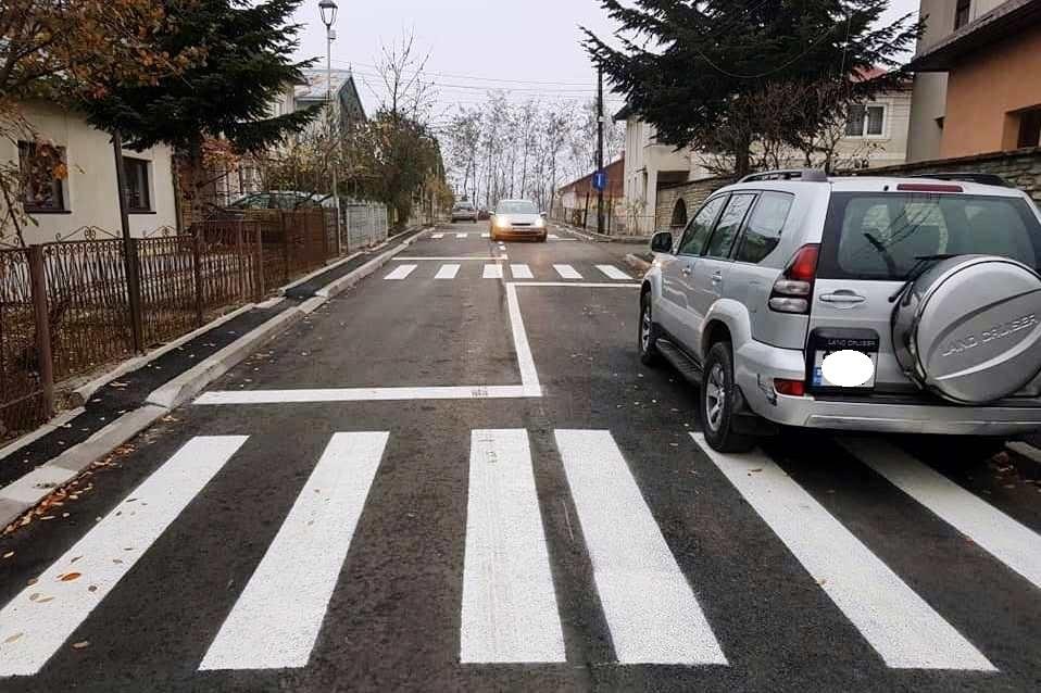 Kilenc zebrát kapott egy 290 méteres román zsákutca