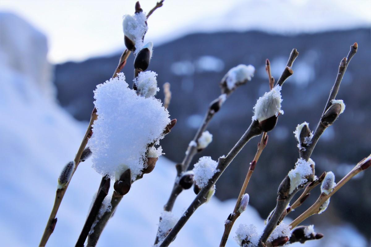 Az Időkép szerint vasárnap este érkeznek az első hópihék