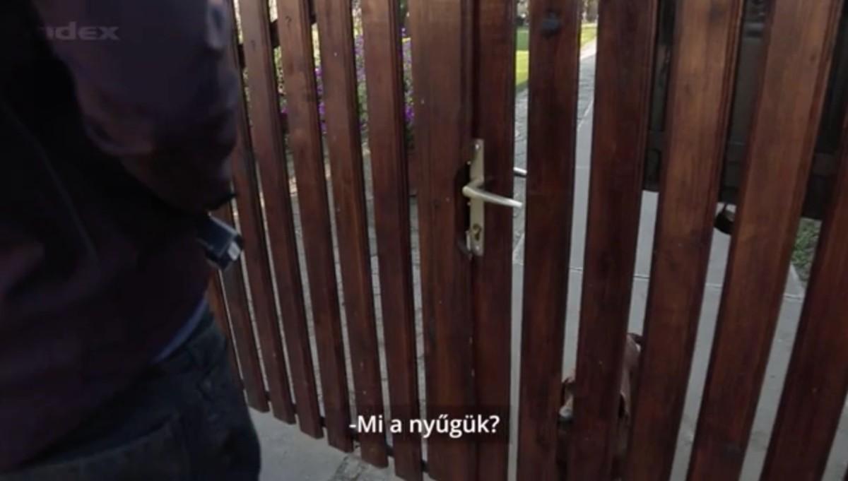 Az Index elment Kósa anyjának BMW-ket lízingelő sertéstelepére – videó