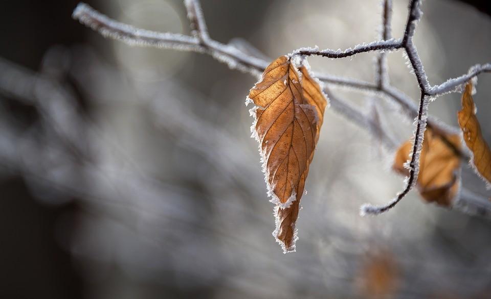 –8 fokot mértek Nógrádban, de hétvégre enyhül az időjárás