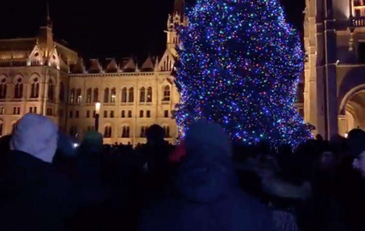Rendőrkordon védi az Ország Karácsonyfáját a népharagtól