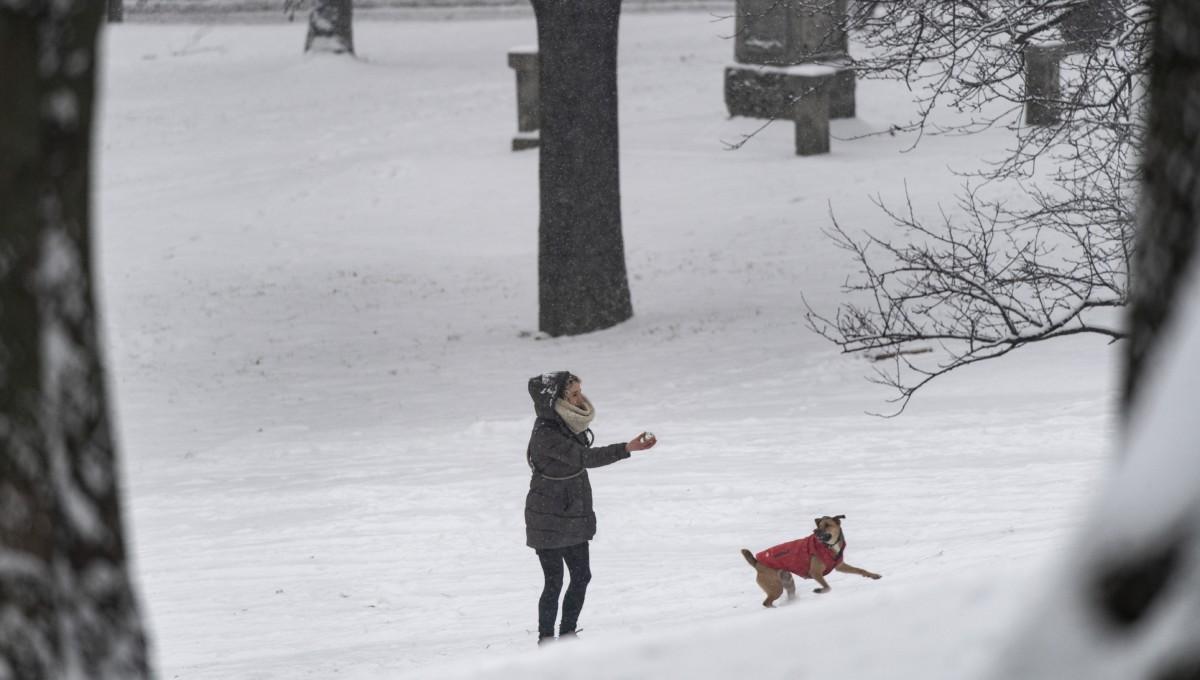 Kutyájával játszik egy nő a behavazott Tabánban 2019. január 8-án.