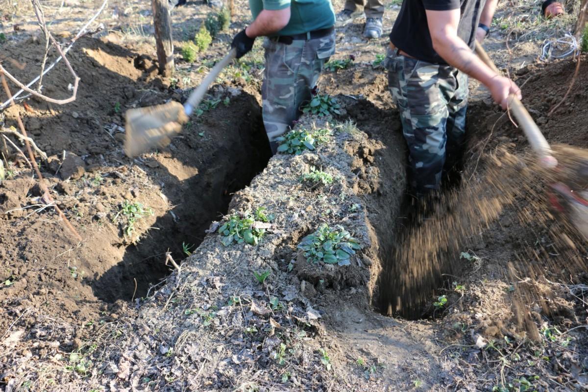Kiderült, ki áshatta el az idős nő holttestét Öreglakon