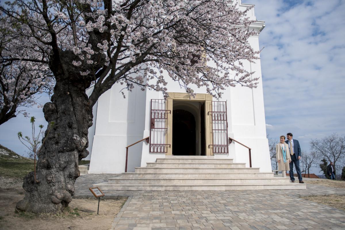 Áder János köztársasági elnök és felesége, Herczegh Anita megtekinti a 2019-es év európai fájának megválasztott pécsi havihegyi mandulafát 2019. március 20-án.