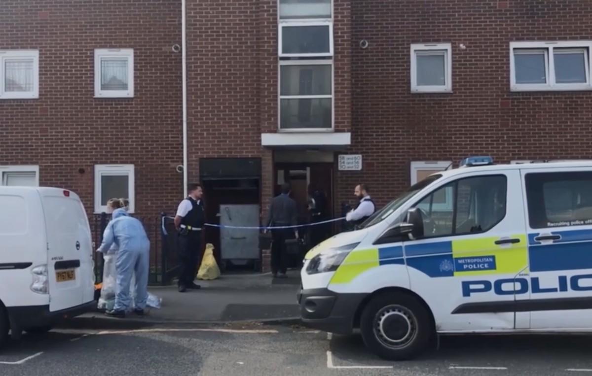Magyar nő holttestét találták meg egy londoni lakás mélyhűtőjében