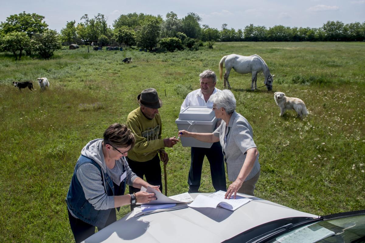 Ádámné Csordás Judit (b) és Varga Béláné (j), a szavazatszámláló bizottság tagjai, valamint Deák Béla, a bizottság delegált tagja (b3) mozgóurnát visz Mátyus Antal (b2) szentkirályi tanyájára az európai parlamenti (EP-) választáson 2019. május 26-án.