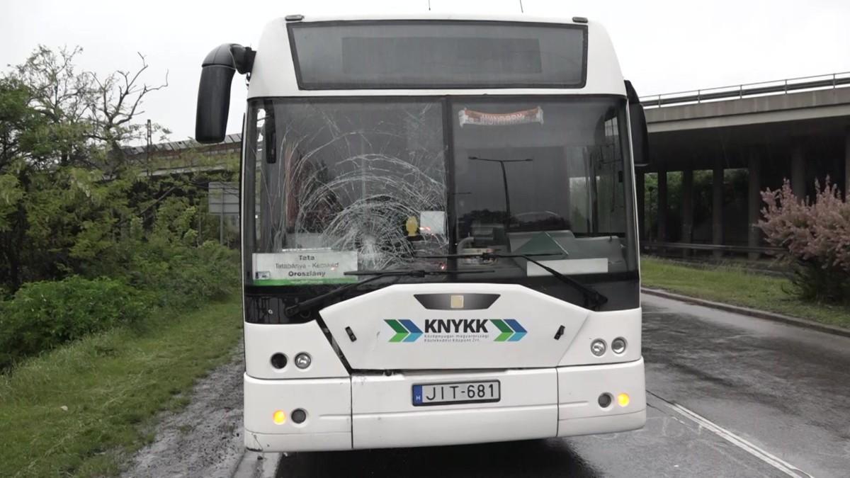 Úttest mellett gyalogló férfit gázolt halálra egy busz Tatabányán