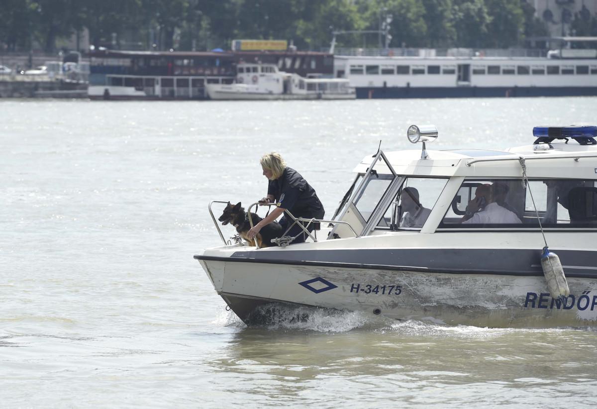 A BRFK Dunai Vízirendészeti Rendőrkapitányság kereső kutyája egy rendőrségi hajón a Dunán Budapestnél 2019. június 7-én.