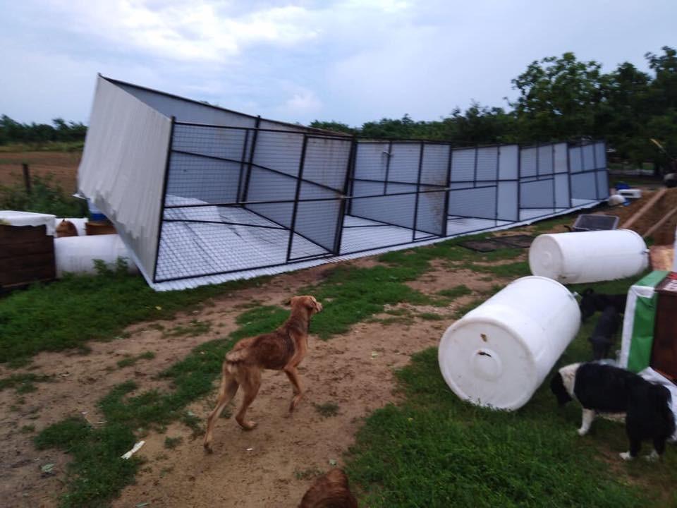 Lerombolta a vihar a mátészalkai állatmenhelyet