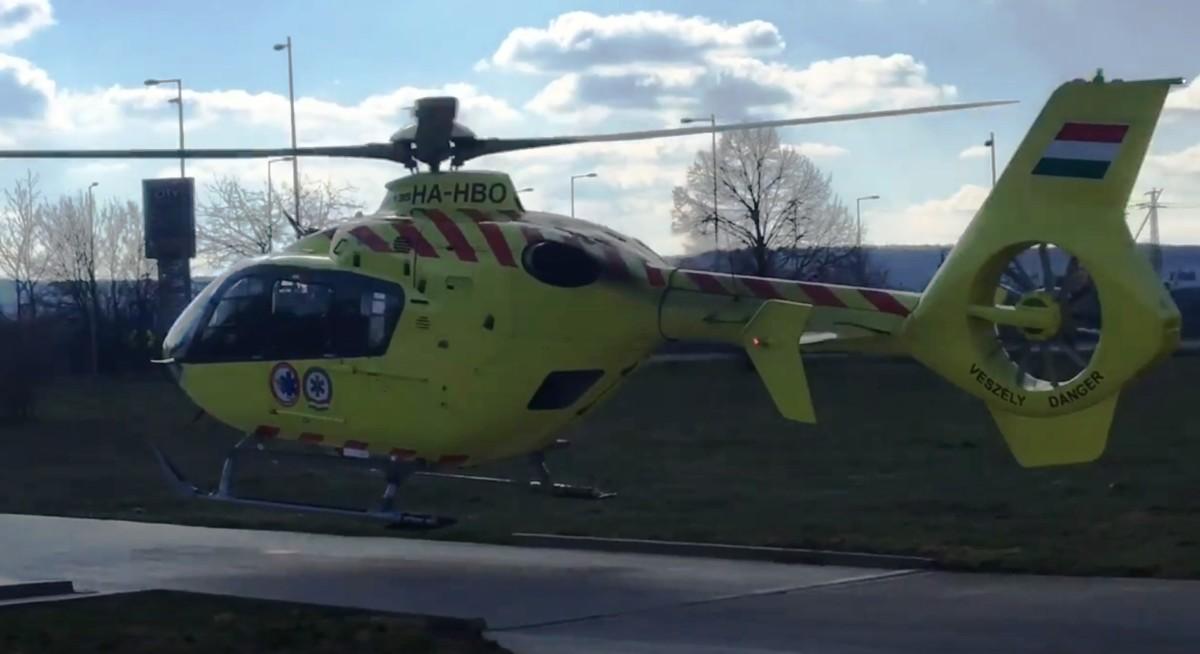 Mentőhelikopter érkezett egy vámosmikolai férfihoz, akit majdnem halálra csípett egy darázs