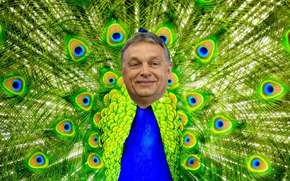A Fidesz megszavazza Manfred Weber frakcióvezetői posztját