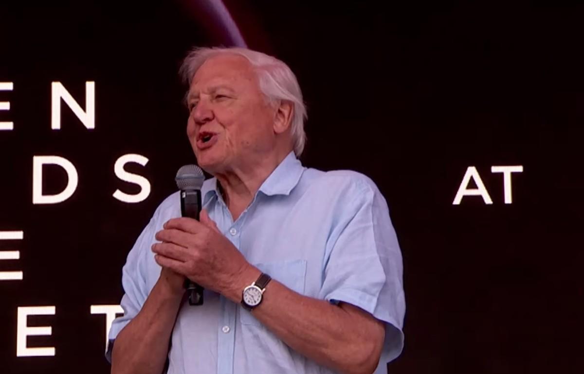 Óriási üdvrivalgás fogadta David Attenborought a Glastonbury fesztiválon