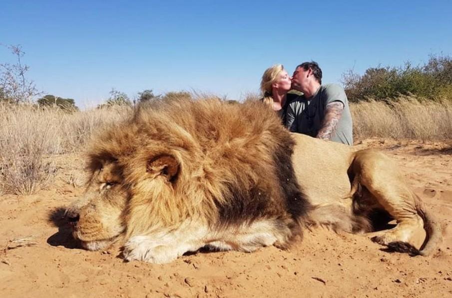 Leölt oroszlán teteme mellett csókolózó pár fotójától forr a net