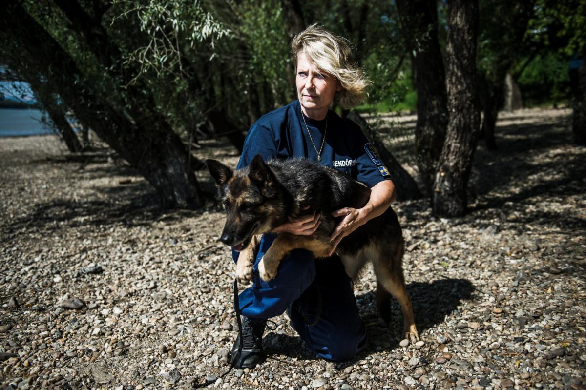 Stein Mária alezredes, a BRFK bűnügyi kutyavezetői alosztály munkatársa bűnügyi speciális holttestkereső kutyájával, Liluval a dunakeszi Duna-parton 2019. július 3-án.