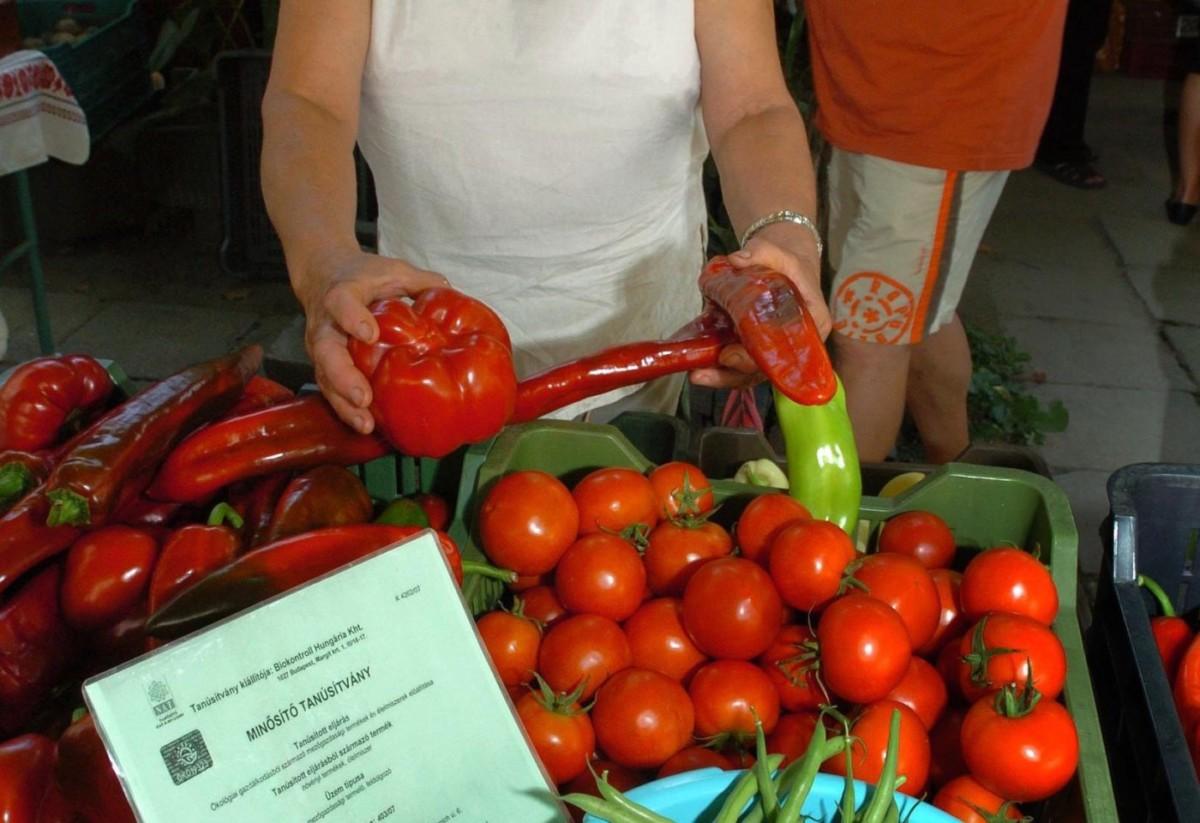 Földi Gyuláné hajdúböszörményi biogazda zöldséget kínál a debreceni biopiacon 2008. szeptember 6-án.
