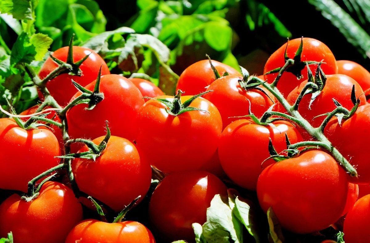Szakértő: azért drágább a zöldség, mert jobban keresünk, és jobb minőséget akarunk