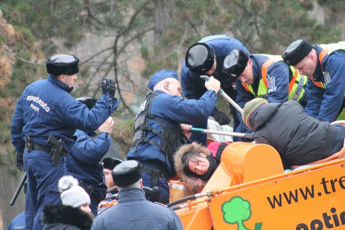 Felfüggesztett börtönt kapott a rendőr, aki vesén rúgott egy kislányt a Ligetvédők táborában