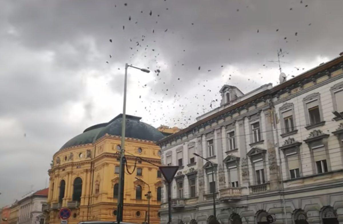 Letarolta a vihar Szegedet, életveszélyes sérült is van