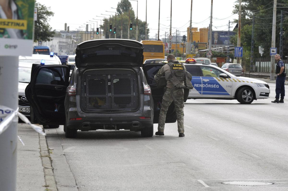 A Terrorelhárítási Központ kutyás egységének munkatársa 2019. szeptember 27-én a IX. kerületi Soroksári úton, ahol három férfi és három nő megtámadott egy 38 éves nőt, aki nyolc napon belül gyógyuló, könnyű sérülést szenvedett.