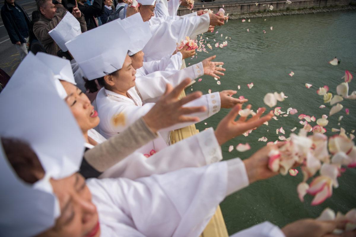 Koreai táncosok rózsaszirmokat szórnak a Dunába a Margit hídról a Hableány hajó balesetének áldozataiért tartott megemlékezésen 2019. október 7-én.