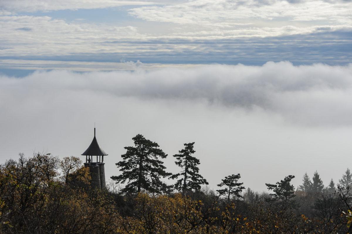 Talaj menti köd a Kozmáry-kilátó mögött Mátrafüredről fotózva 2019. november 14-én.