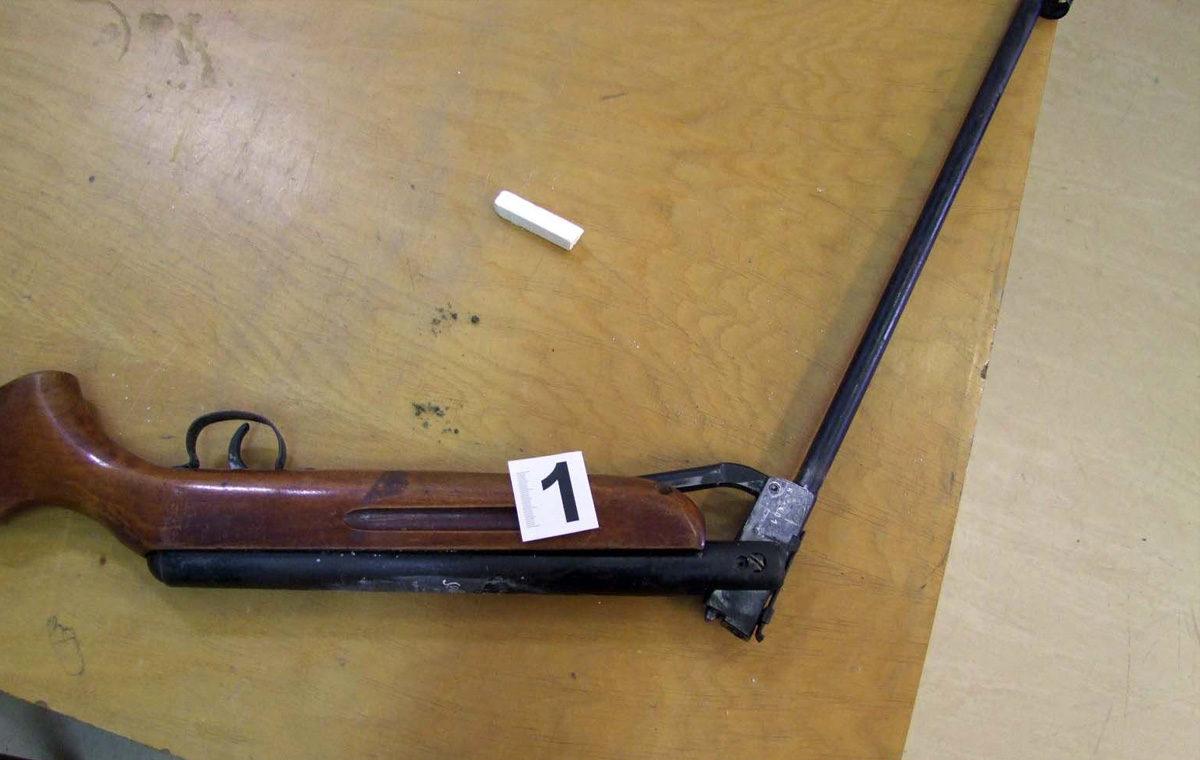 Vádat emeltek az apa ellen, akinek a gyereke állon lőtte magát