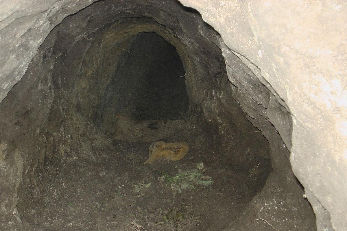 Föld alatti alagút a déli határszakaszon.