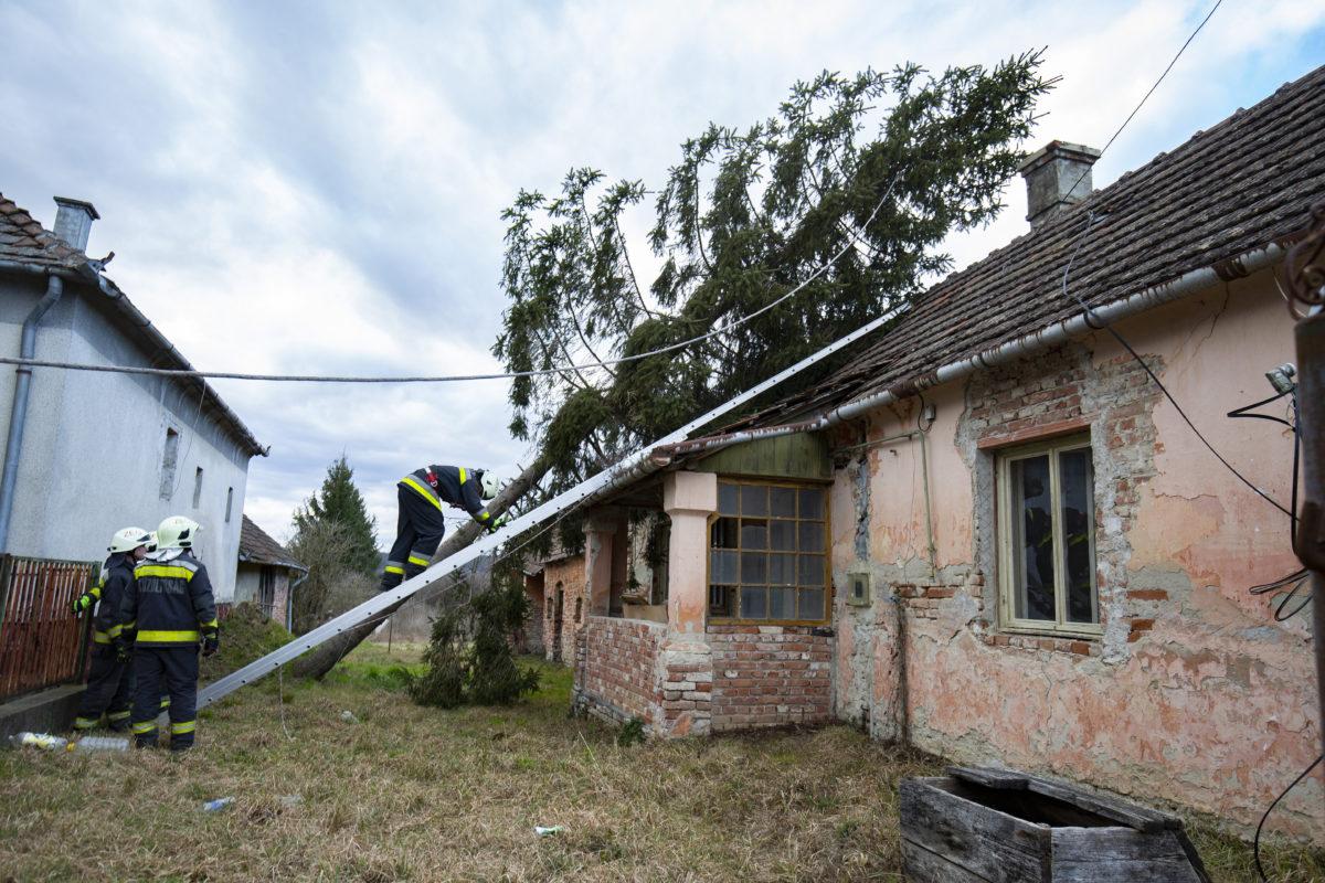 Tűzoltók házra dőlt fát távolítanak el vihar után a Zala megyei Söjtörön, a Deák Ferenc utcán 2020. február 10-én.