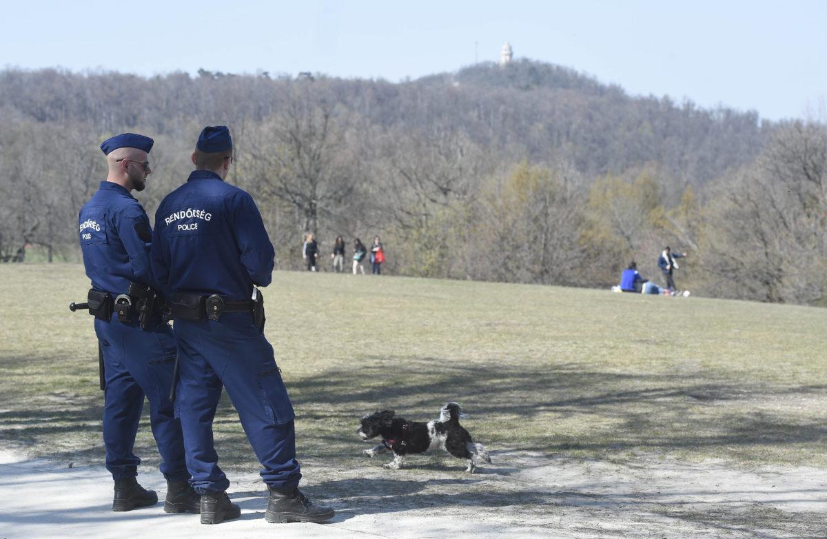 Rendőrök járőröznek Budapesten a Normafa közelében, az Anna-rétnél 2020. április 5-én.