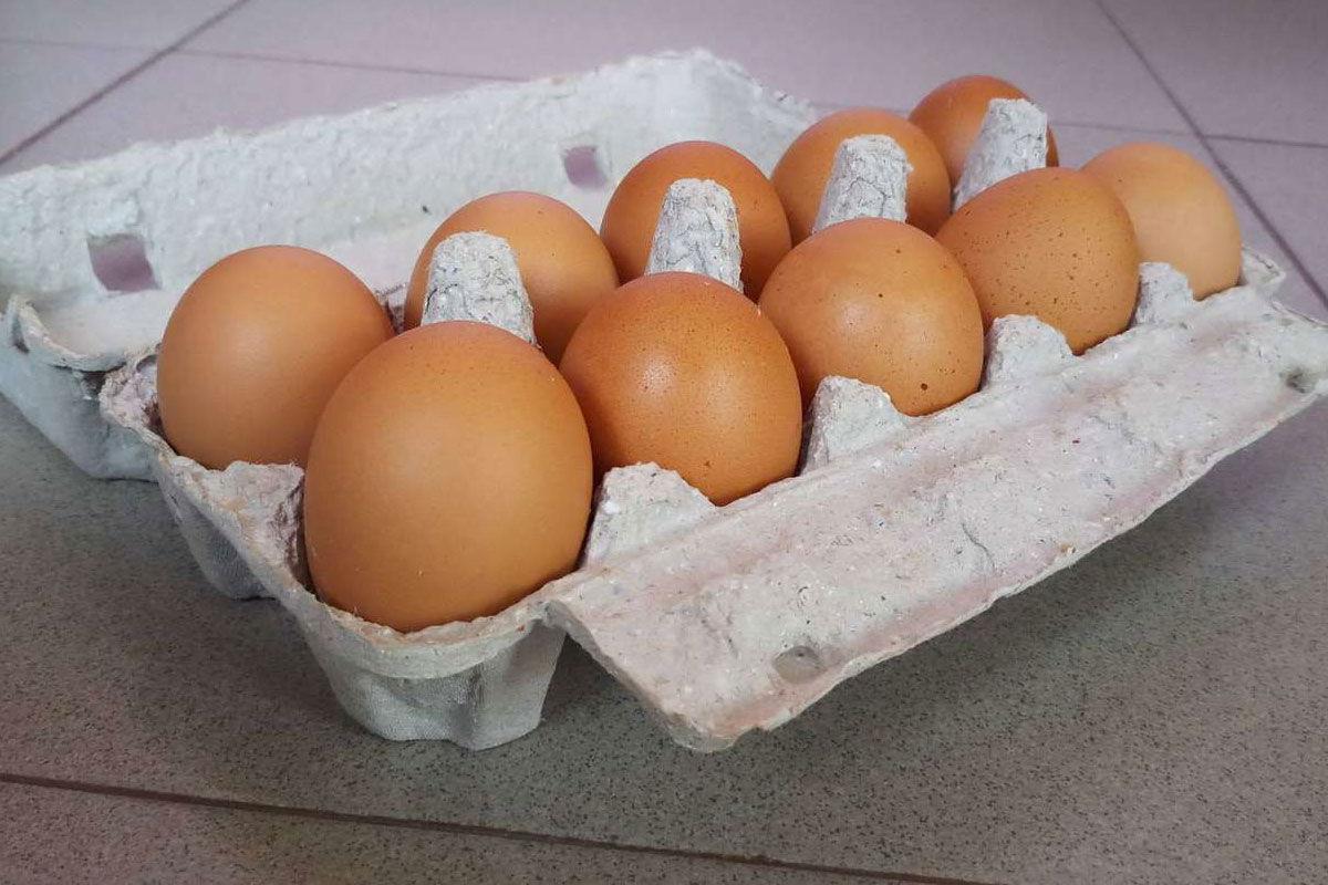 Szalmonellásak Mészáros Lőrinc tojásai, visszahívja őket a Lidl