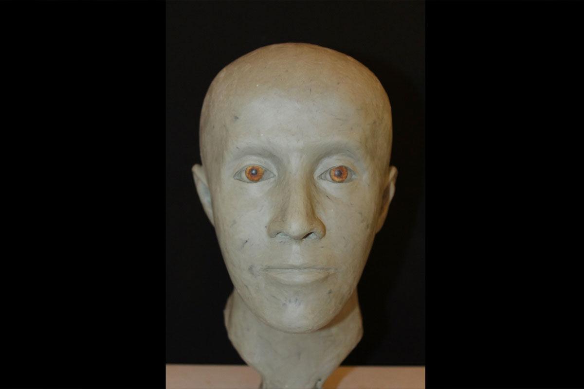 A koponyacsont alapján rekonstruált emberi arc.