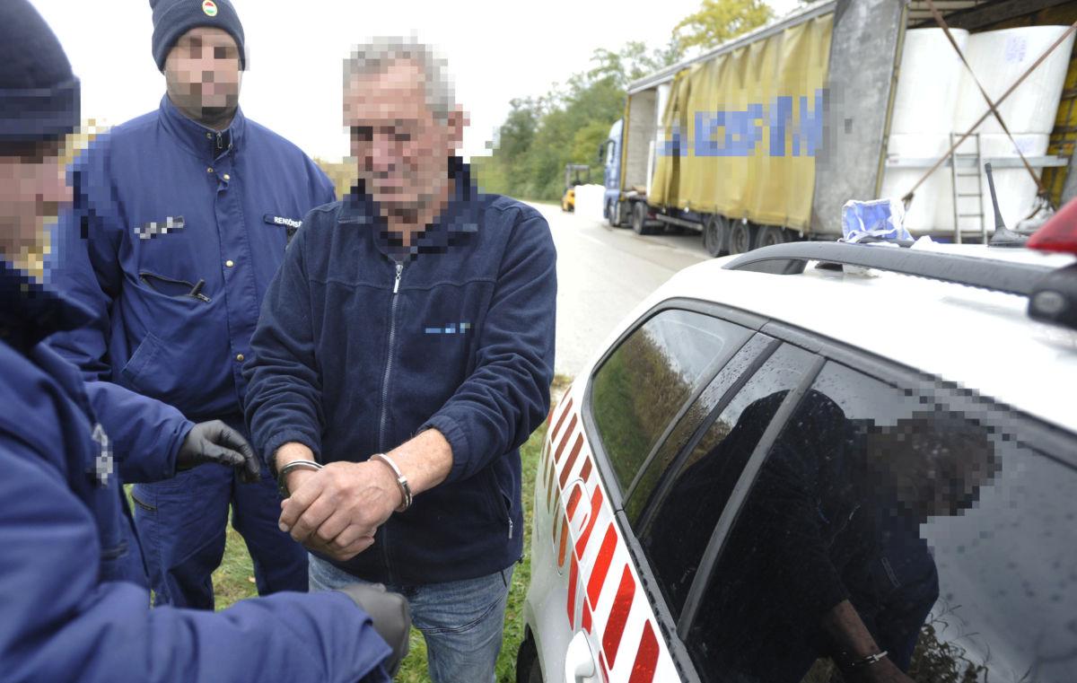 Egy Pest megyei rendőr megbilincseli azt a 71 éves bosznia-hercegovinai sofőrt, akinek a kamionjában delta-9THC kábítószert találtak egy zsámbéki parkolóban 2020. október 15-én.