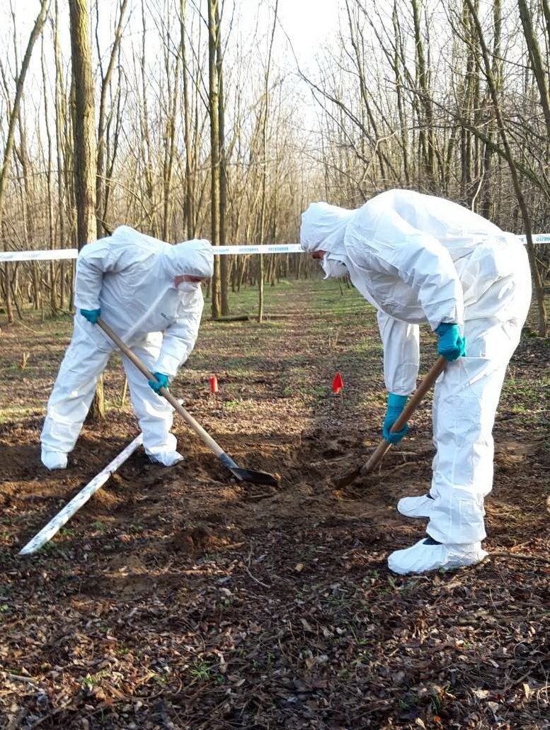 Helyszínelők ásnak egy erdős részen.