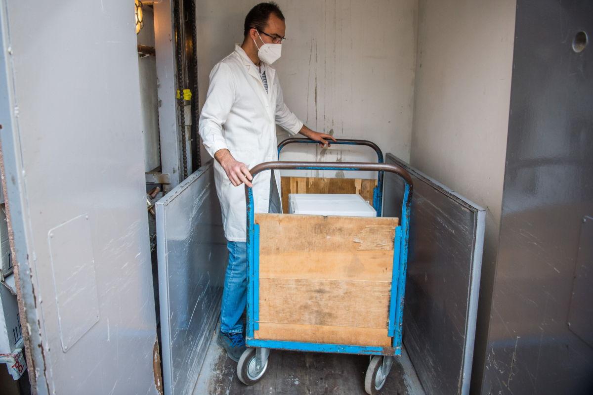 Az újonnan érkezett Pfizer-BioNTech-vakcinákat pakolja egy dolgozó a Semmelweis Egyetem gyógyszertárában 2021. március 2-án.