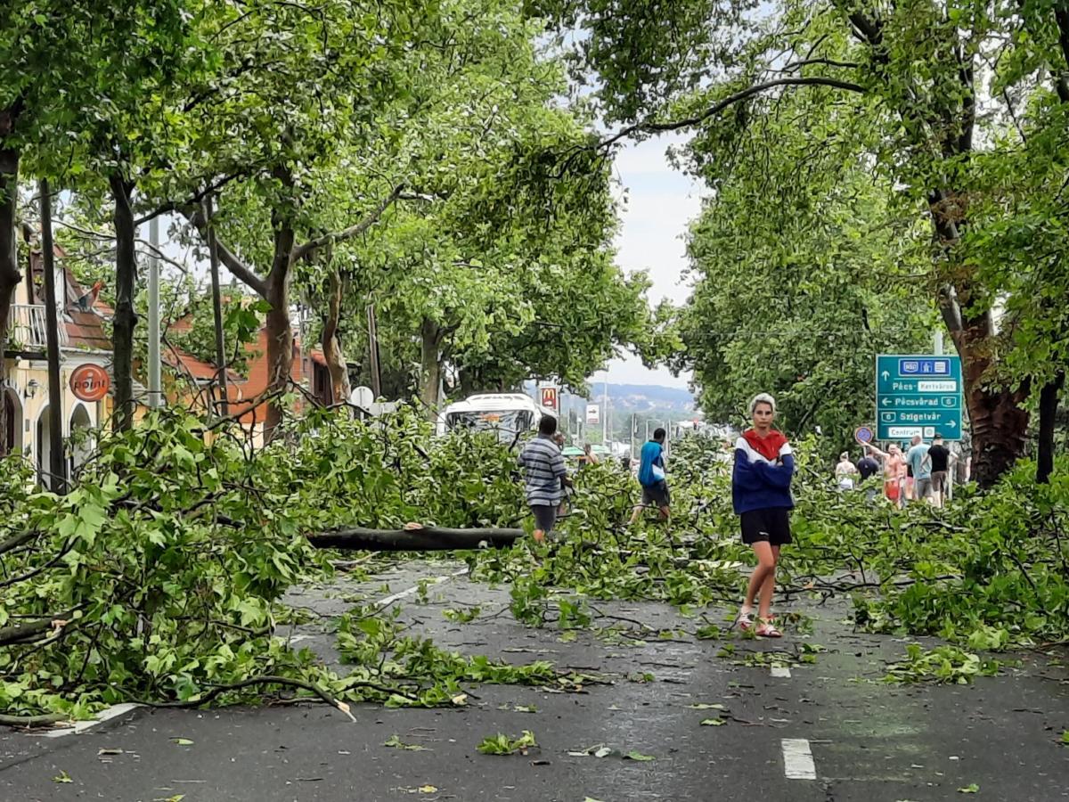 Pécs keleti része, a Komlói út a vasárnapi vihar után.