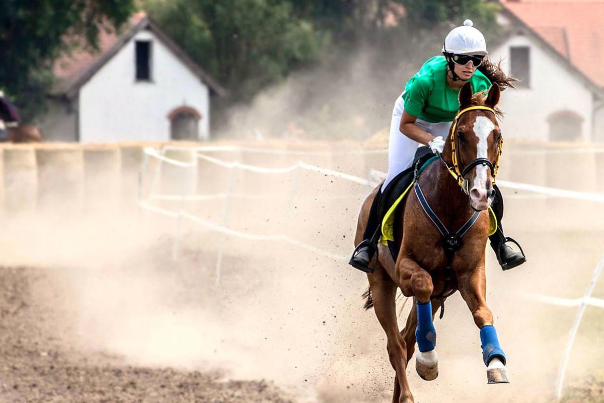Jeles Eszter, nyíregyházi születésű lovas.